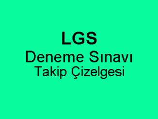 LGS Deneme Sınavı Takip Çizelgesi