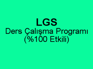 LGS Etkili Ders Çalışma Programı