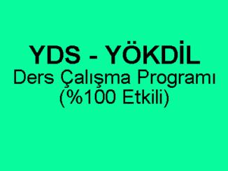 YDS YÖKDİL Ders Çalışma Programı