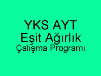 YKS AYT Eşit Ağırlık Çalışma Programı