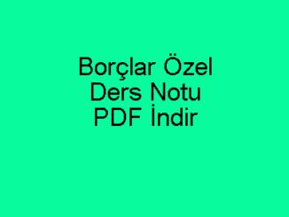 Borçlar Özel Ders Notu PDF İndir