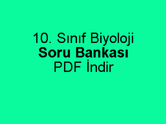 10. Sınıf Biyoloji Soru Bankası PDF İndir
