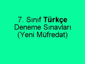7. Sınıf Türkçe Deneme